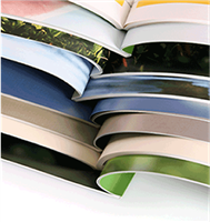 "Booklets & Catalogs Offset Printing 8.5"" x 11"""